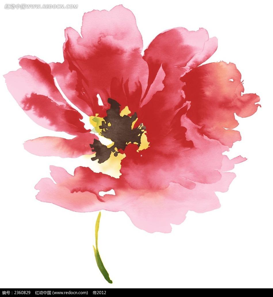 手绘红色水彩花