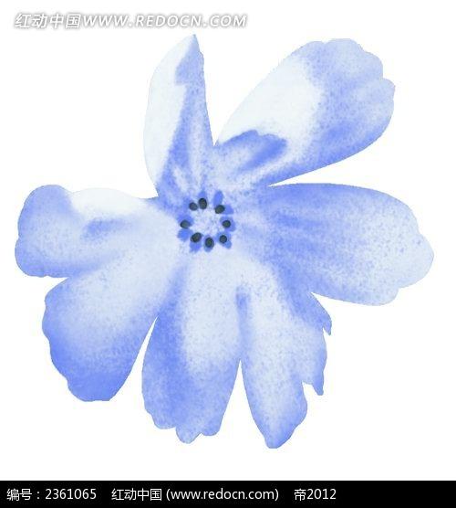 手绘蓝色波斯菊