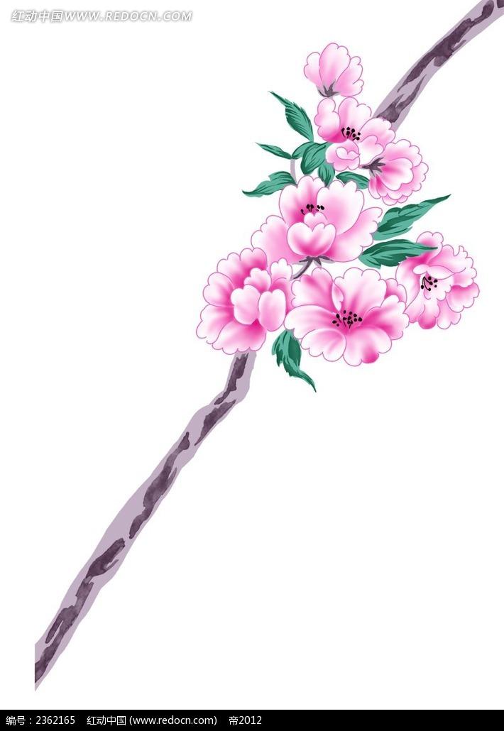 一枝梅花手绘插画