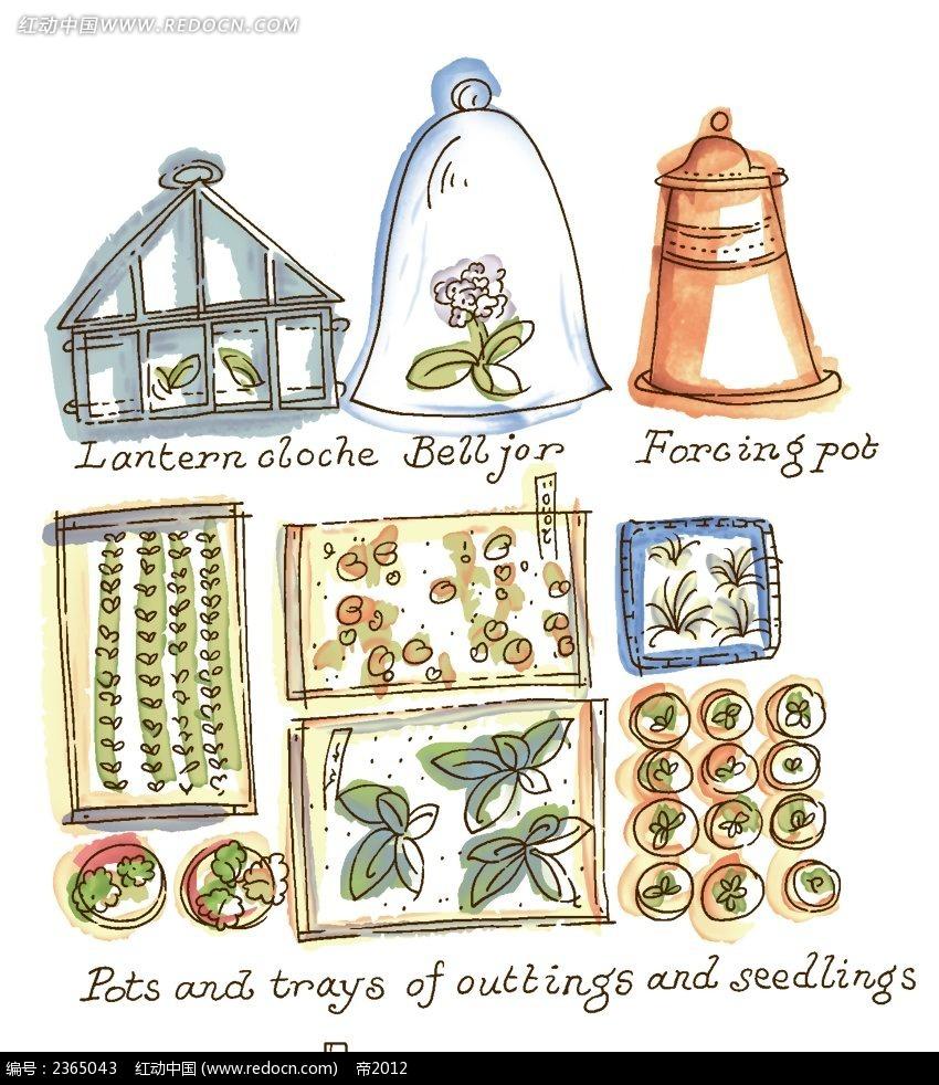 花房盆栽手绘水彩插图