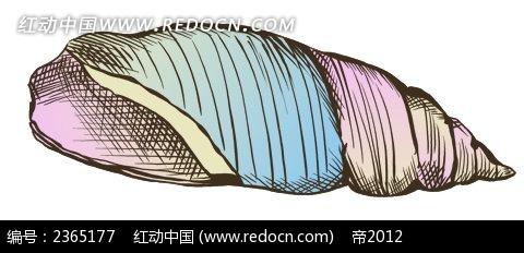 织纹螺手绘水彩物品漫画