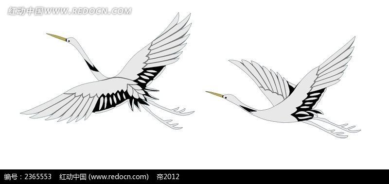 手绘白鹤图片