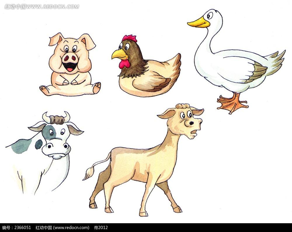 手绘卡通家禽图片