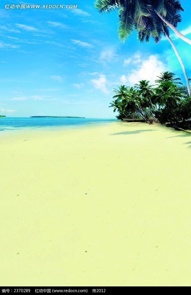 沙滩大海椰子树