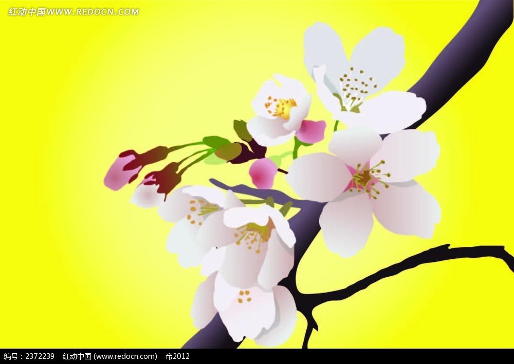 漂亮樱花手绘图