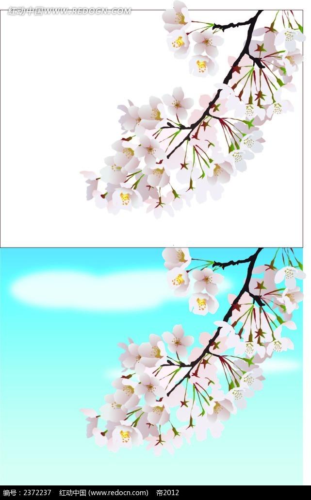 唯美手绘樱花