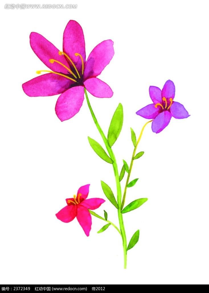 矢量水彩手绘花朵