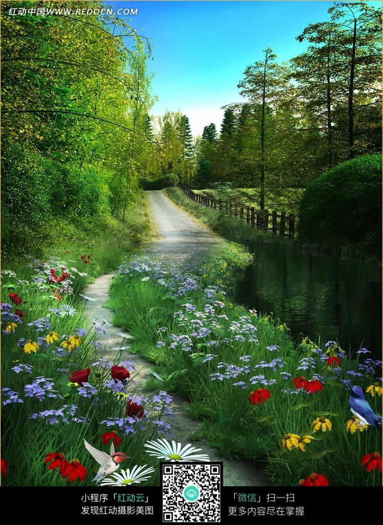 Картинки цветов обои цветы на рабочий стол