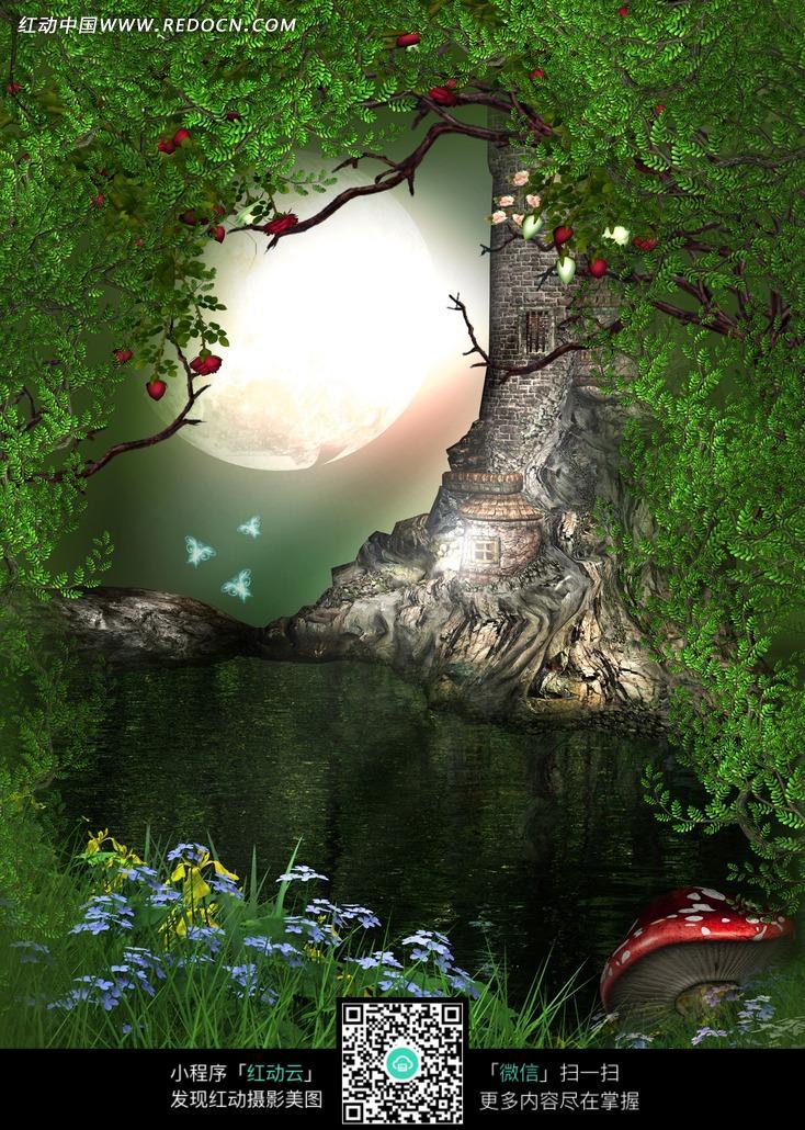 夜幕古老森林的河流摄影背景图片
