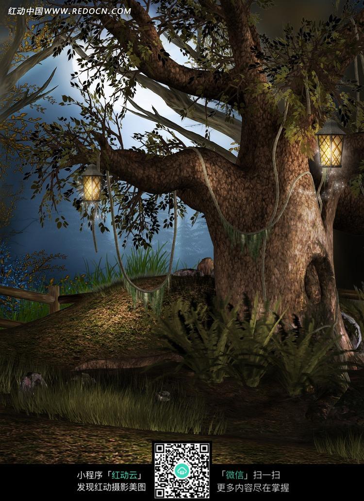夜里的森林古树摄影背景图片