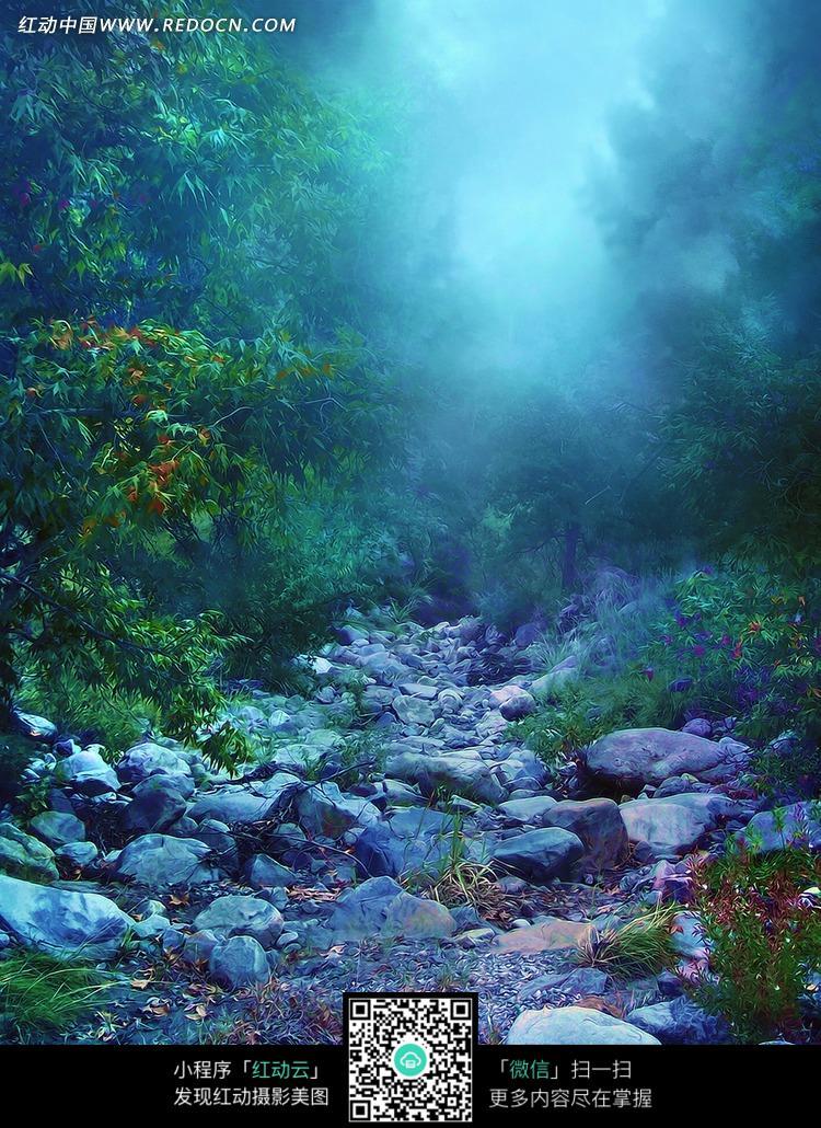 梦幻森林的溪流摄影背景墙
