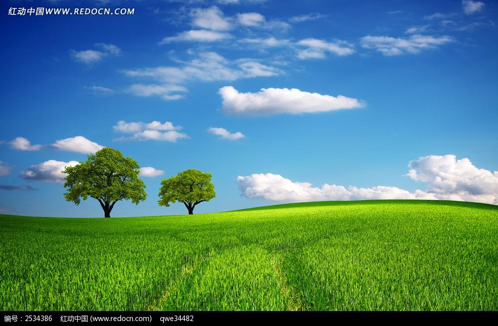 田野草原手绘图片