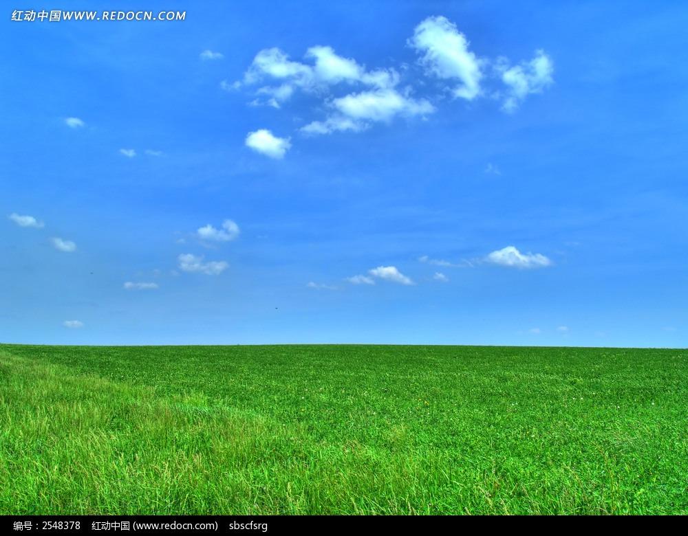 蓝天白云下青绿色的草地图片 高清图片