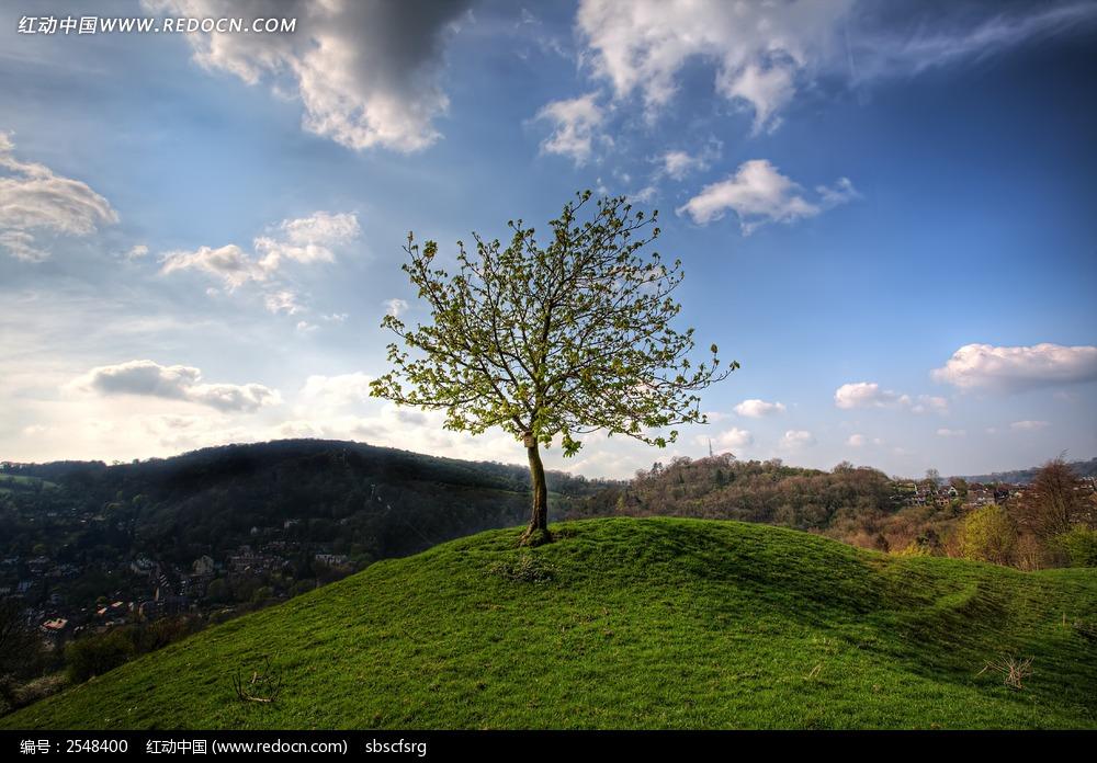 山岭小树图片 自然风景图片 -风景图片