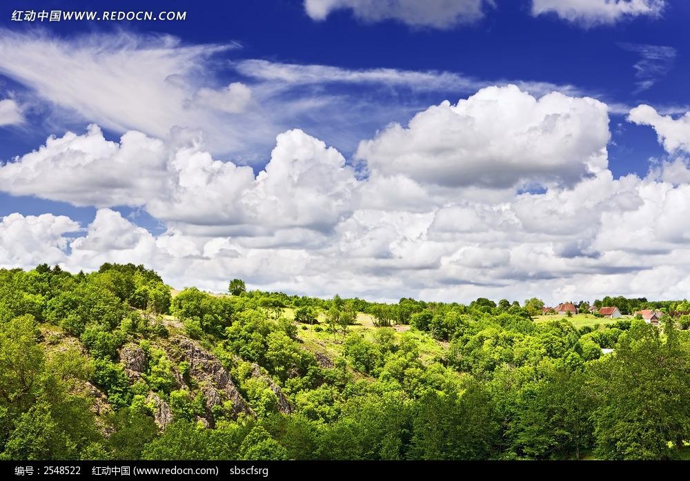蓝天白云树林背景图片