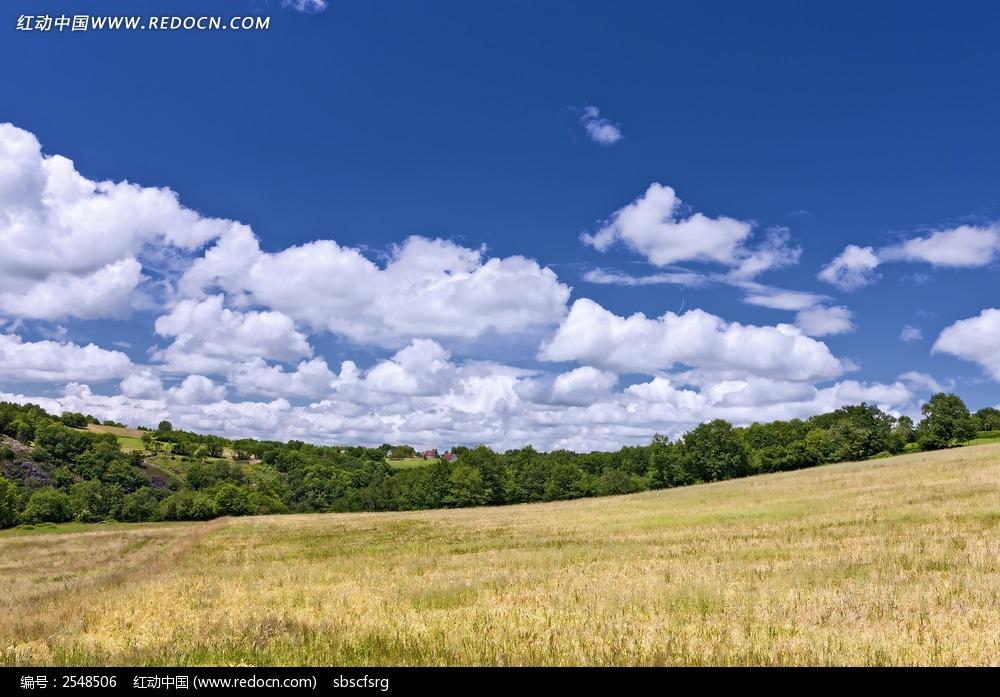 蓝天白云山坡背景图片图片