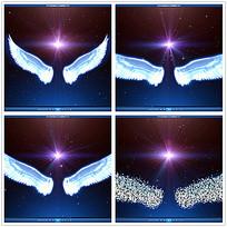 星光天使翅膀视频