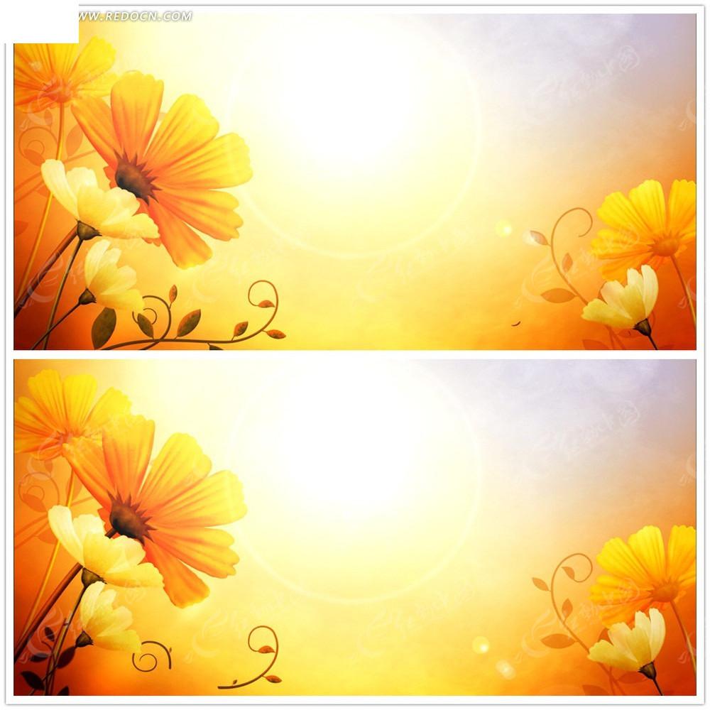 唯美手绘花朵背景视频