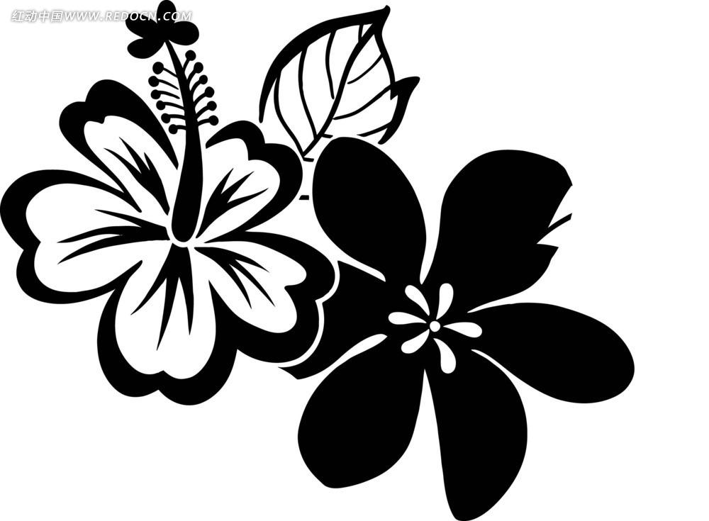 黑白手绘花纹图片