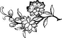 传统玉兰花传统图案素材