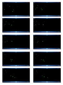 绿色星光粒子视频