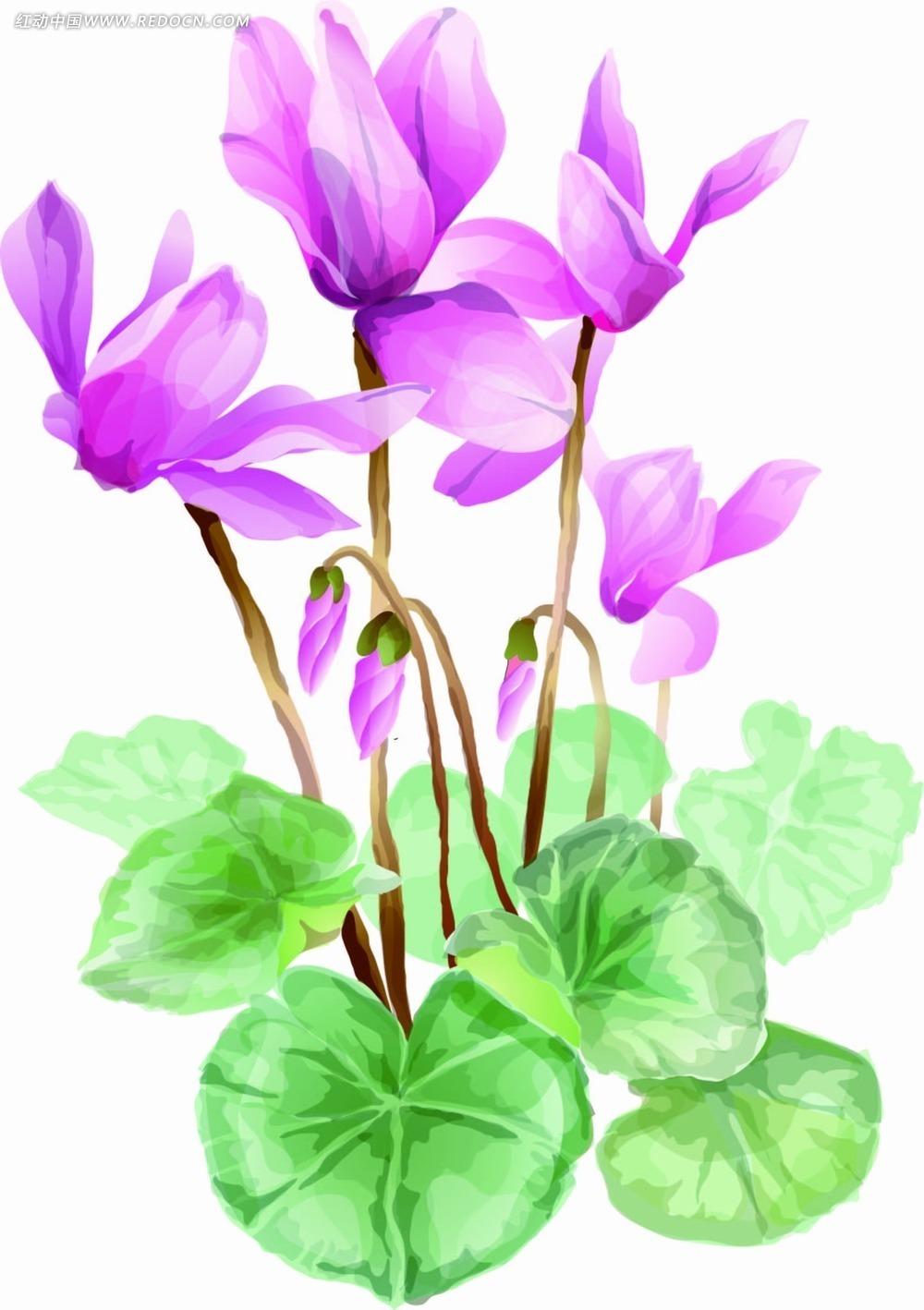 手绘鲜花花