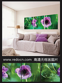 花卉摄影图装饰画