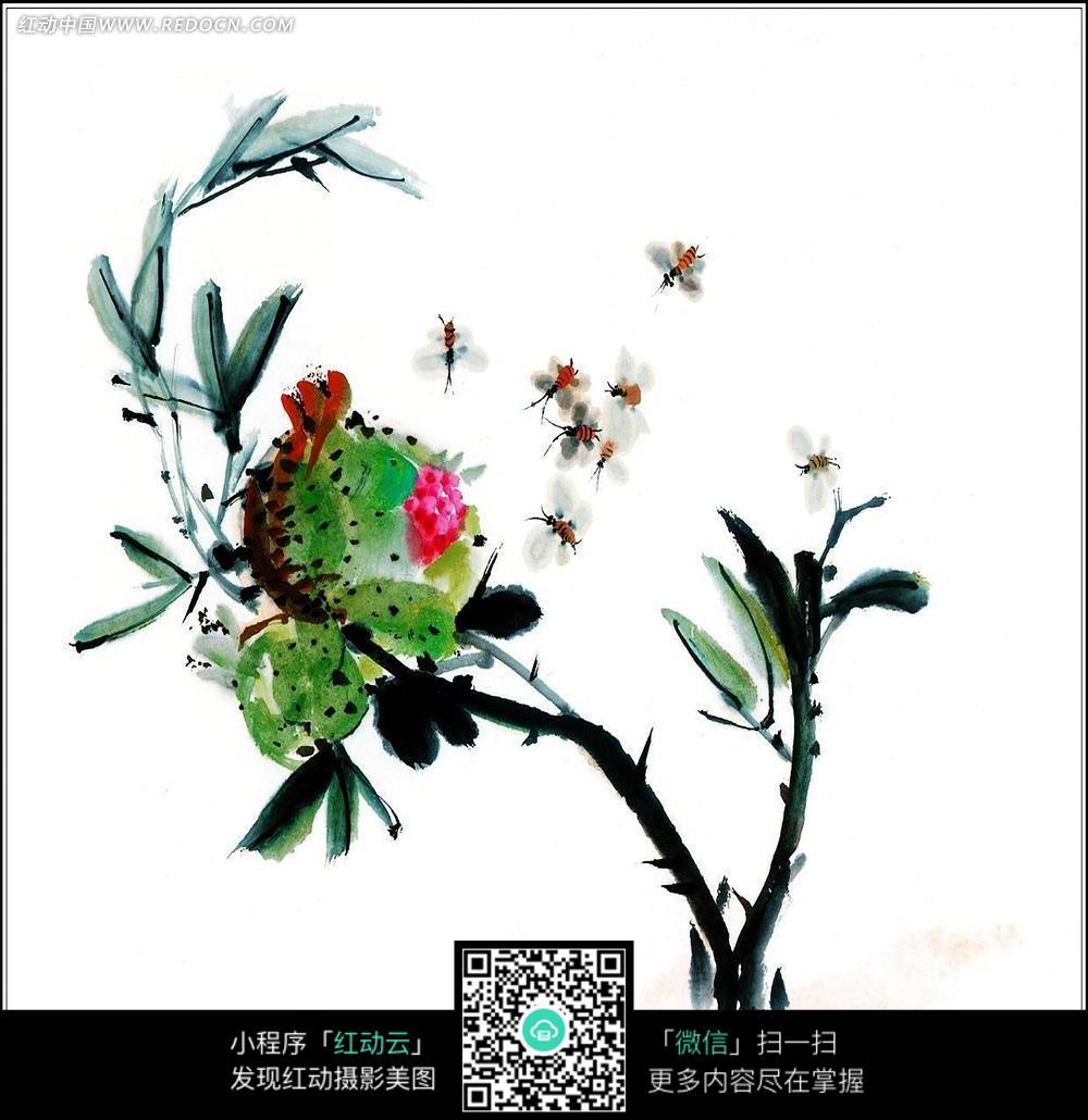 中国风工笔花鸟图
