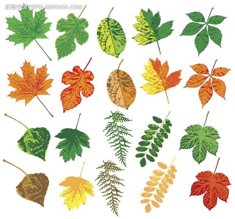 树叶背景ppt模板