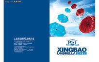 雨伞宣传画册封面PSD素材