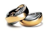 一对矢量的戒指