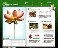 绿色经典的欧美网页模板源文件