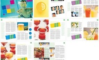 饮料画册版式设计模板