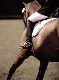 跳跃骑马球衣的马师图片_体育运动图片皇马栏杆在哪买图片