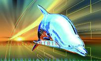 工业科技图 3D立体海豚 三维立体动物
