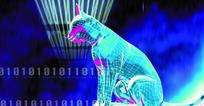 工业科技图 3D立体猫 三维立体动物