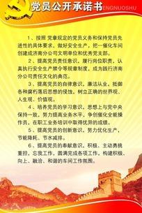 党建展板图片 党员公开承诺书