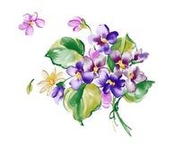PS紫色花朵花卉素材