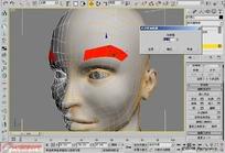 3Dmax编辑多边形修改器(元素级别)操作教程