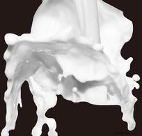 奶花特写素材