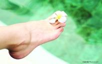 放有一朵鲜花的脚