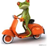 骑摩托车的卡通青蛙