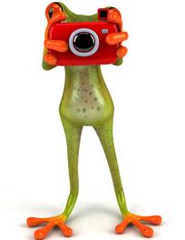 3D可爱拍照的青蛙