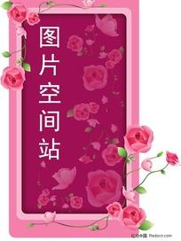 粉色玫瑰边框背景