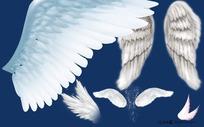 各种角度的天使翅膀psd分层素材