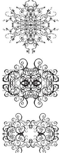 黑白线条花卉图片_黑白线条花卉设计素材_红动网