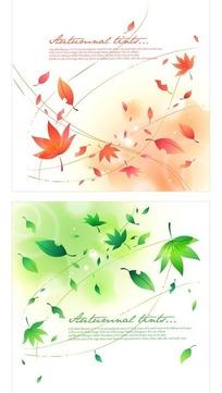 飞舞的枫树叶