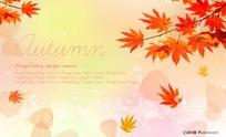秋季红色枫叶背景图