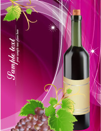 葡萄与葡萄酒