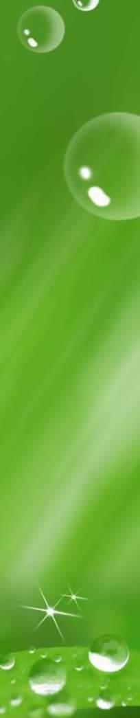 绿色展板背景图